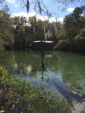 Manatee Sanctuary Park (Cape Canaveral) - All You Need to