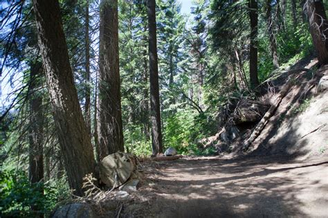 Very Special Vacant Land in Sequoia Nat Forest