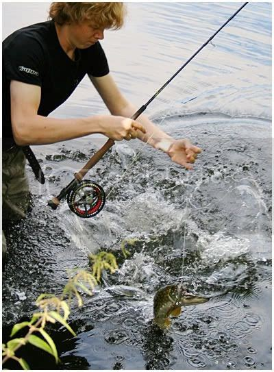 Fly Fishing Nation: Testing The Pike-Booster Fly