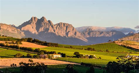 Your one-day Itinerary in Stellenbosch | 9Lives