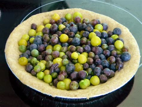Grape and Ground Cherry Crumble Pie with Potato Pastry