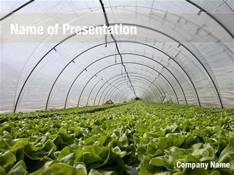 Green House PowerPoint Templates - Green House PowerPoint