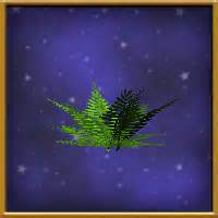 House:Sparse Frond - Wizard101 Wiki