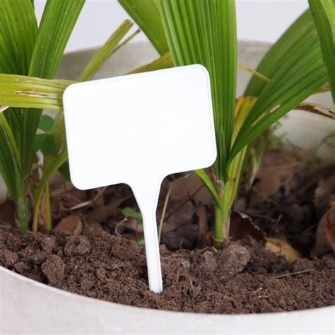 25 Pack - White Plastic Plant Markers T Shaped | Seeds for
