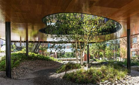 dRMM Architects' Maggie's Centre Oldham is an oasis of