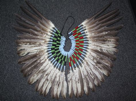Man Charged With Selling Bald Eagle Feathers: US Attorney