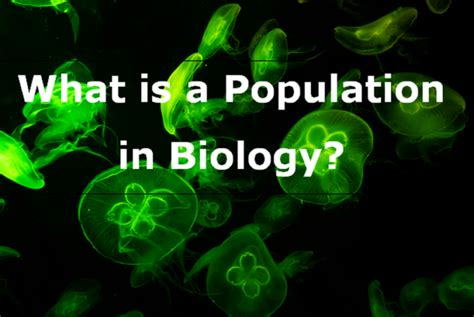 What is a Population in Biology? - 99Science